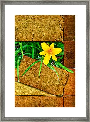 Blooming Out Framed Print