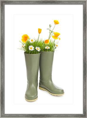 Blooming Wellington Boots Framed Print by Amanda Elwell