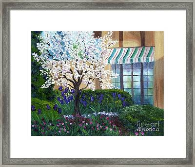 Blossoming Tree At Ainsley House Framed Print