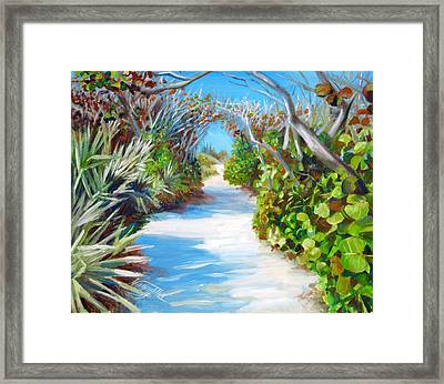 Blowing Rocks Framed Print by Nancy Tilles