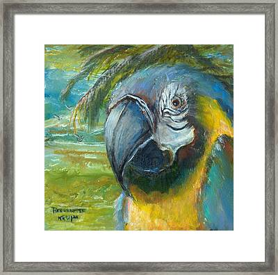 Framed Print featuring the painting Blue And Gold Macaw By The Sea by Bernadette Krupa