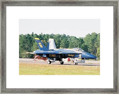 Blue Angel Framed Print by Clint Day