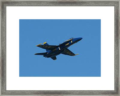 Blue Angel Solo Framed Print by Samuel Sheats