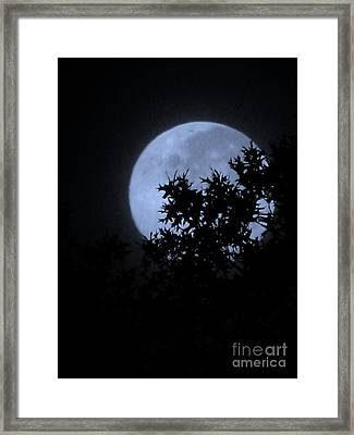 Blue August Framed Print