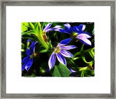 Blue Ballet Framed Print by Judi Bagwell