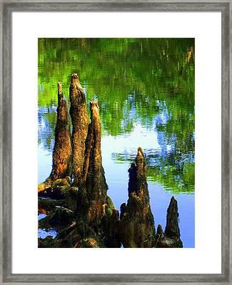 Blue Bayou Framed Print by Karen Wiles
