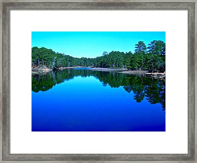 Blue Beauty Framed Print by Frank SantAgata