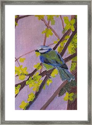 Framed Print featuring the painting Blue Bird by Christy Saunders Church