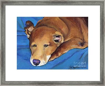 Blue Blanket Framed Print by Pat Saunders-White
