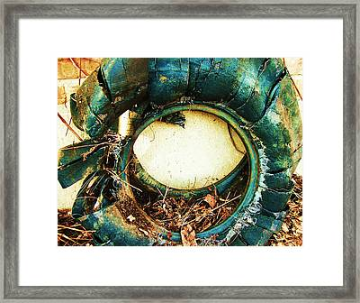 Blue Blow Out Framed Print by Todd Sherlock