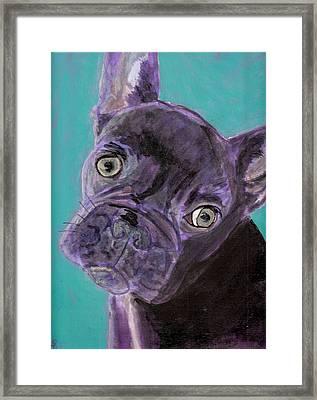 Blue Brownie Framed Print