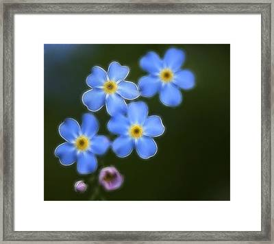 Blue By You Framed Print by Chris Hartman Price