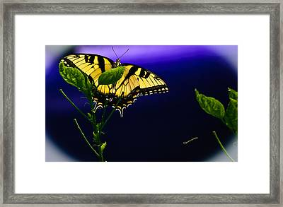 Blue By You Framed Print by DigiArt Diaries by Vicky B Fuller