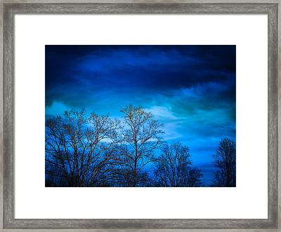 Blue Delight Framed Print by Victoria Ashley