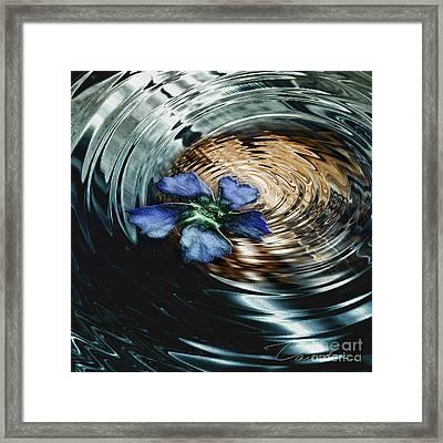 Blue Flower Swirl Framed Print by Danuta Bennett