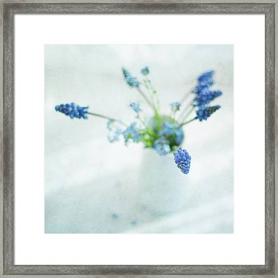 Blue Flowers In White Jug Framed Print