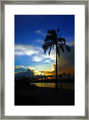 Blue Hawaii Framed Print by Richard Stillwell