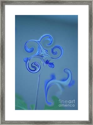 Blue Heaven Framed Print