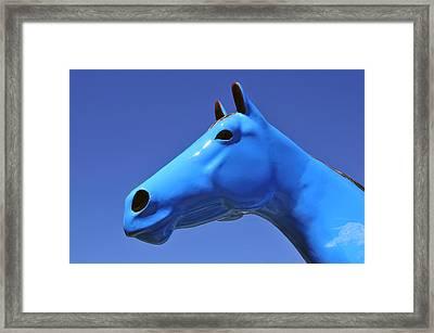 Blue Horse Framed Print by David Lee Thompson