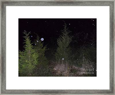 Blue In The Greenery Framed Print by Doug Kean
