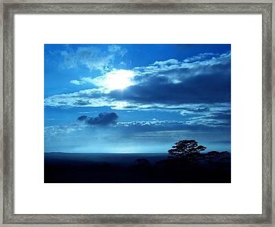 Blue Lights Framed Print by Nadi Leonard