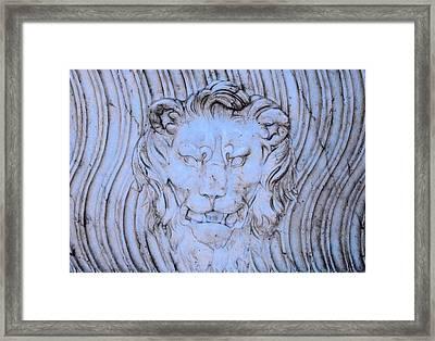 Blue Lion Framed Print by