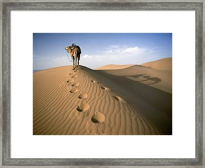 Blue Man Tribe Of Saharan Traders With Framed Print by Axiom Photographic