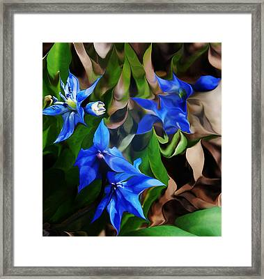 Blue Manipulation Framed Print by David Lane