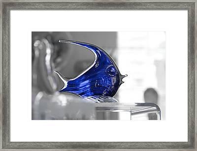 Blue Framed Print by Michael Braxenthaler