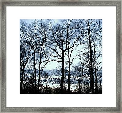 Framed Print featuring the photograph Blue Mirage by Pamela Hyde Wilson