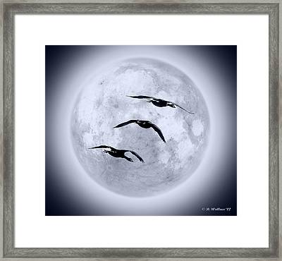 Blue Moon Geese Framed Print by Brian Wallace