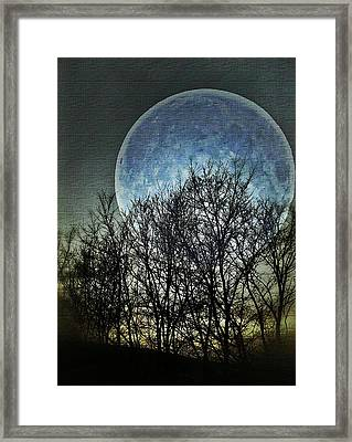 Blue Moon Framed Print by Marianna Mills
