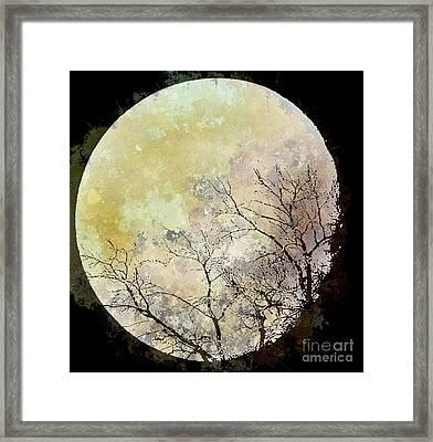 Blue Moon Rising Framed Print by Arne Hansen