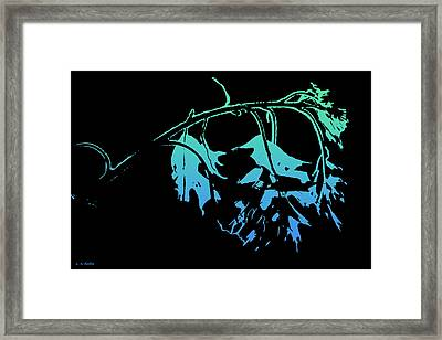 Framed Print featuring the photograph Blue On Black by Lauren Radke