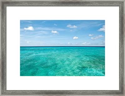 Blue On Blue  Framed Print by Jim Chamberlain