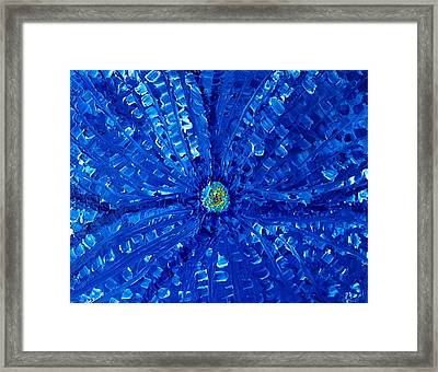 Blue Orchid   Framed Print by Pretchill Smith