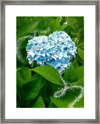 Blue Pom Flower Framed Print by Lee Yang