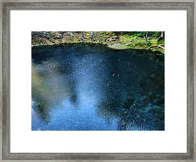 Blue Pool V Framed Print
