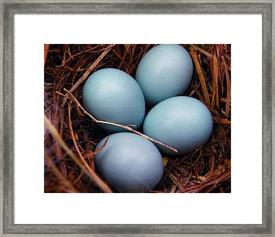 Blue Promises Framed Print