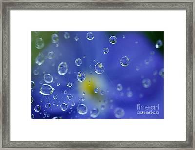 Blue Raindrops Framed Print by Yumi Johnson