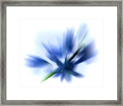 Blue Framed Print by Sharon Lisa Clarke