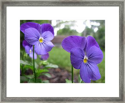 Blue Sisters Framed Print