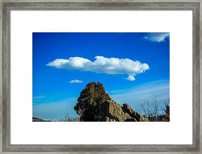 Framed Print featuring the photograph Blue Skies by Shannon Harrington