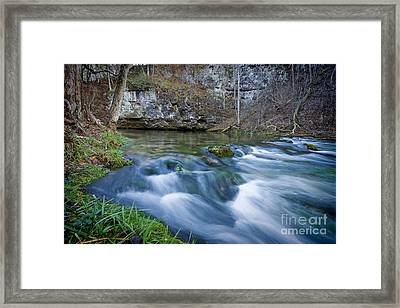Blue Spring Framed Print