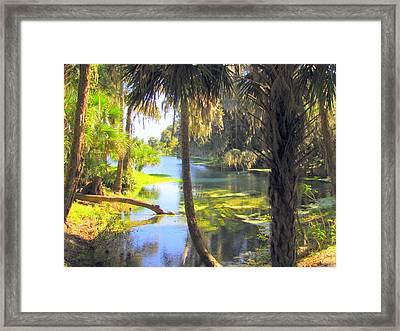 Blue Springs Framed Print