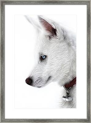 Blue Framed Print by Tilly Williams