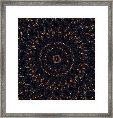 Blue Velvet 4 Framed Print by Rhonda Barrett