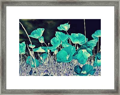 Blue Vision Framed Print