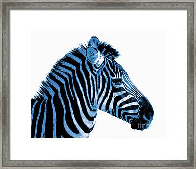 Blue Zebra Art Framed Print