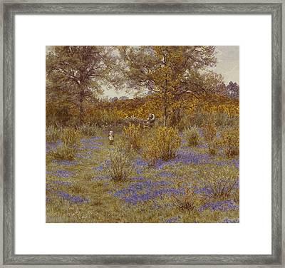 Bluebell Copse Framed Print by Helen Allingham